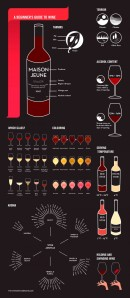 a-beginners-guide-to-wine.png
