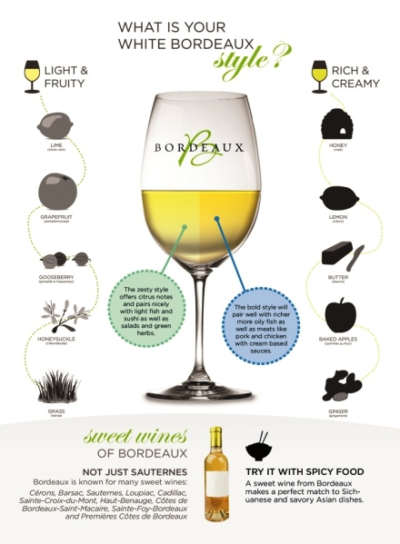 Bordeaux-Wine-and-food-pairing-InfoGraphic-rear