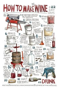 WOSA-How-to-Make-Red-Wine