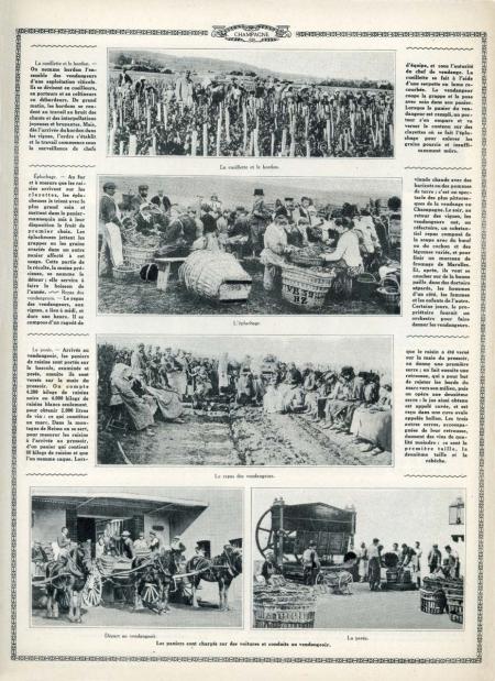 1champagne_1920s-5