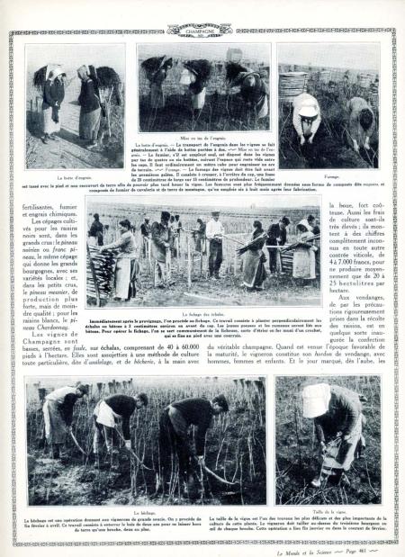 1champagne_1920s-2