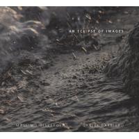 Massimo Discepoli/Daniel Barbiero: An Eclipse Of Images