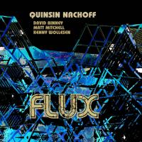 Quinsin Nachoff: Flux