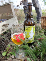 1damien_menut_harvest_biere_faucheurs