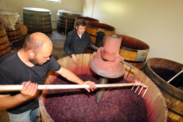 1nicolas_vauthier_spreading_grapes_press