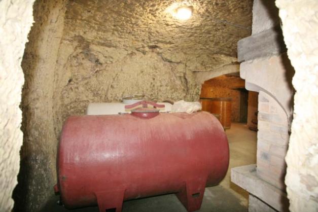 1noella_morantin_cellar_corner_fireplace
